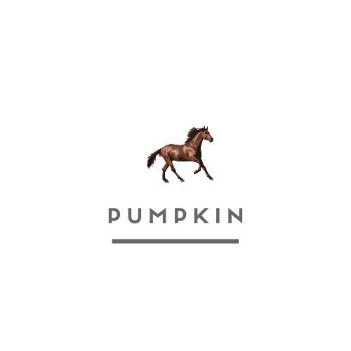 horse with unique names