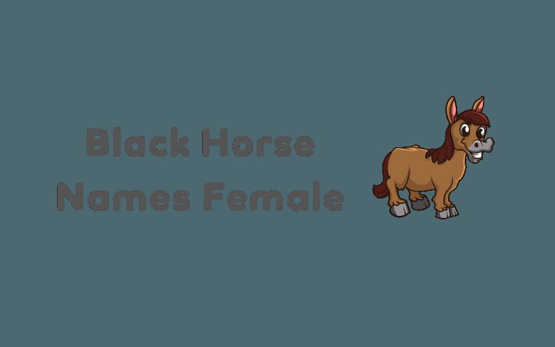 black horse names female