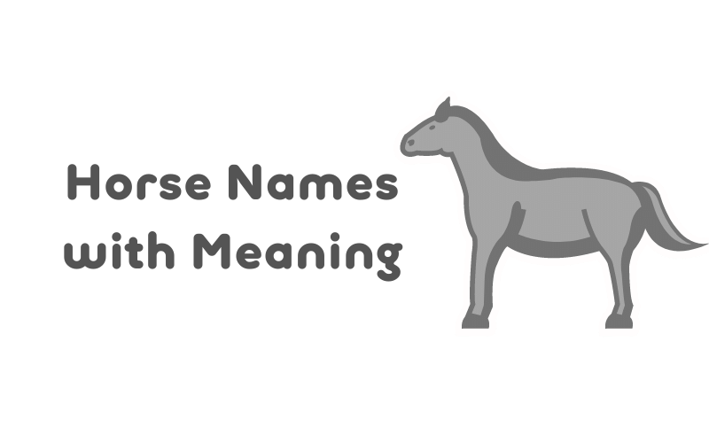 black horse names with meaning