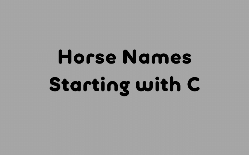 horse names starting with c