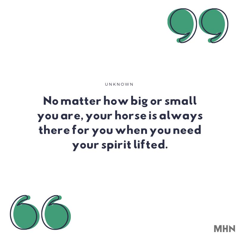 black horse quotes