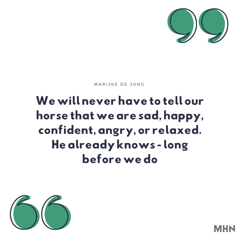 horse inspiration quotes