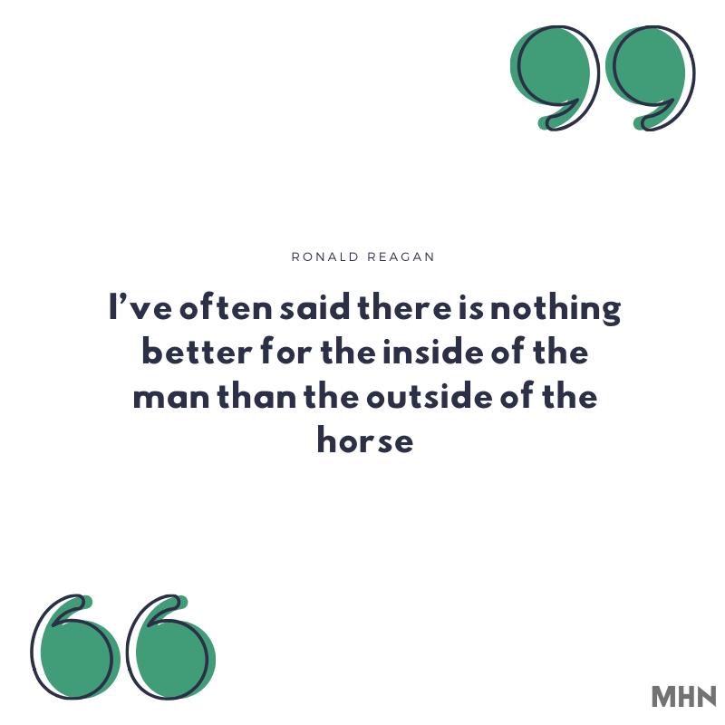 inspirational horse
