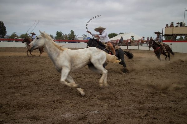 female mexican horse names