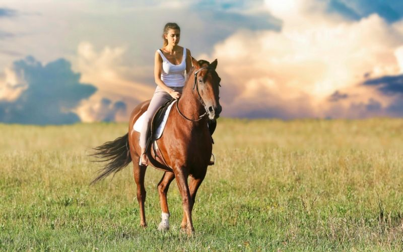 famous western horse names