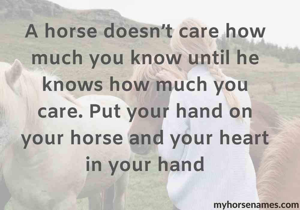 Horse-Bonding-inspirational-Quotes..