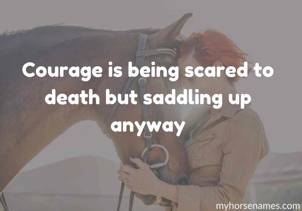famous-Horse-Bonding-Quotes