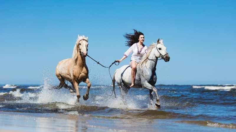 female dun horse names