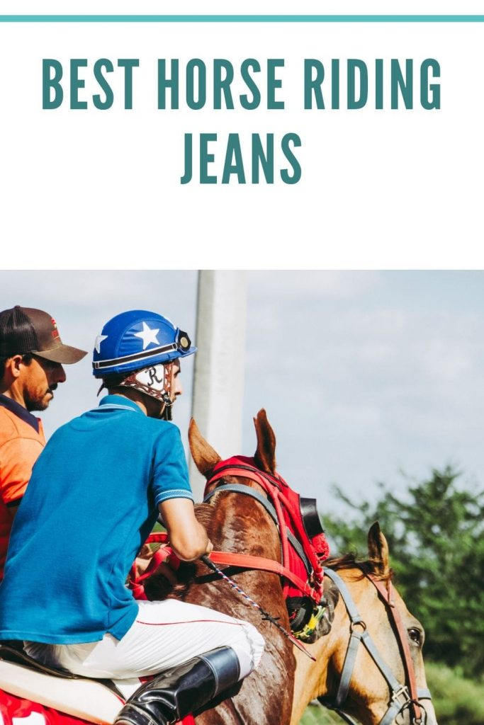 horse riding jeans