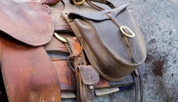 Billy Cook Saddles Reviews