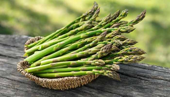 Can Horses Eat Asparagus