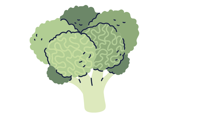 What-should-broccoli-be-mixed-with