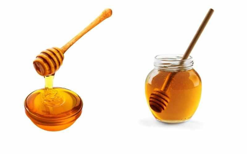 horses for honey