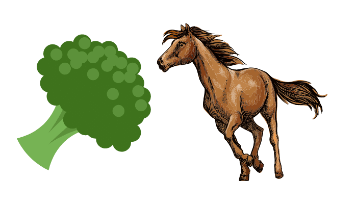 is broccoli toxic for horses