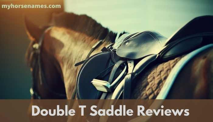 Double T Saddle Reviews
