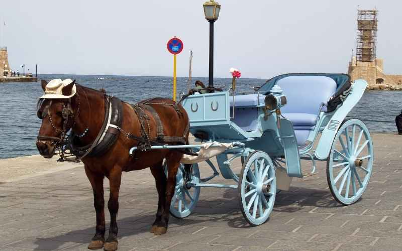 How-far-can-a-horse-drawn-wagon-go-in-one-day