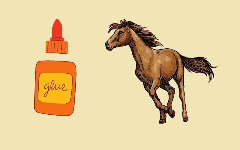 horse glue