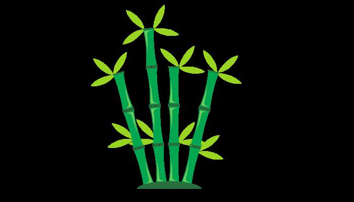 Can Horses Eat Bamboo shoots