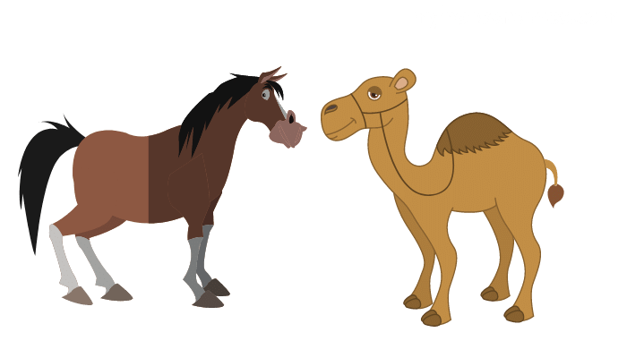 Do Horses scare Camels