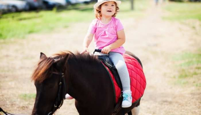 Horse Riding for Toddlers