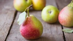 can horses eat pears
