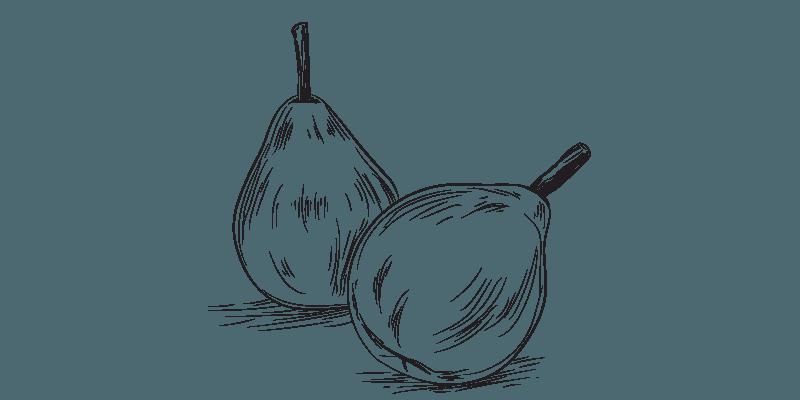 feeding pear to horses