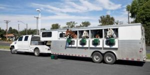 Lakota Horse Trailer Reviews