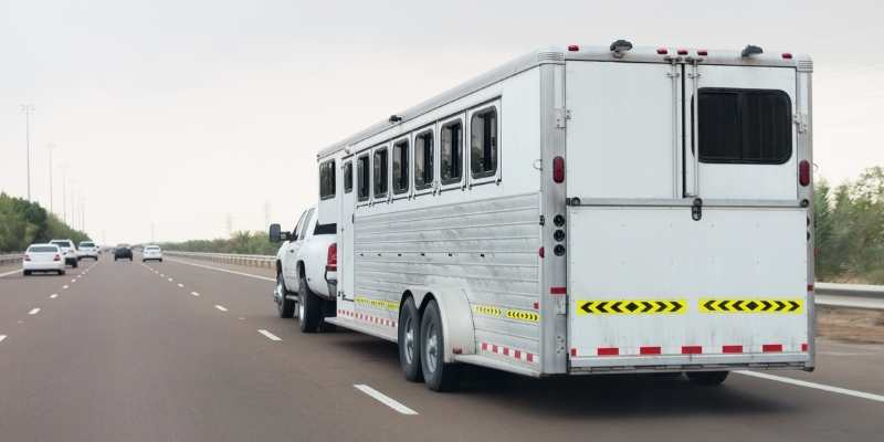 Shadow Horse Trailer Review