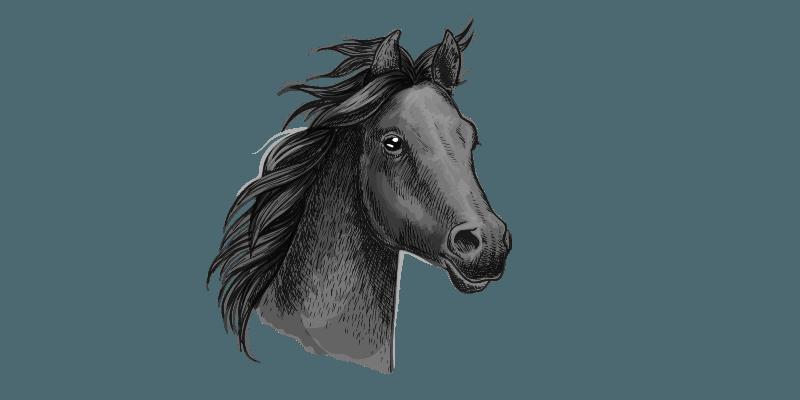 gelding names