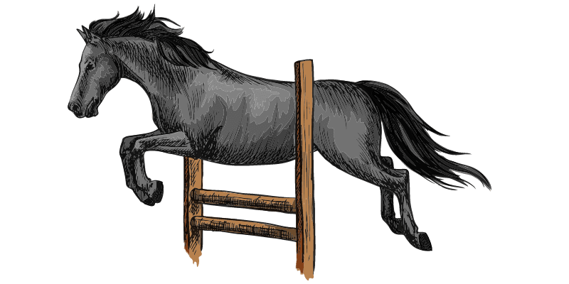 stallion names