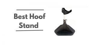 Best Hoof Stand