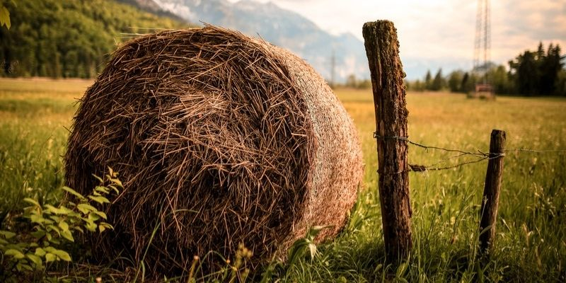 Why are Hay Bales Left in Fields