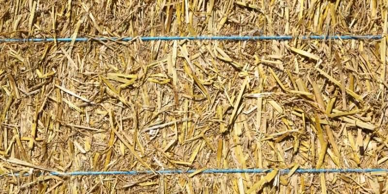 Bale-of-Straw