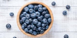 Can Horses Eat Blueberries