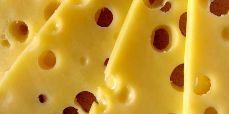 Can Horses Eat Cheese