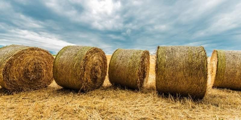 round-hay-bale