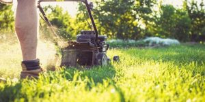 Best Mowers For Mowing Pasture