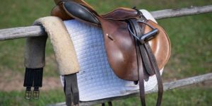 Best Horse Saddle Bags