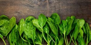 Can Horses Eat Spinach