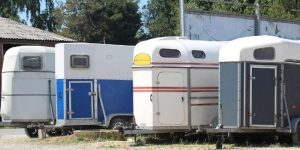 Two Horse Trailer Weight